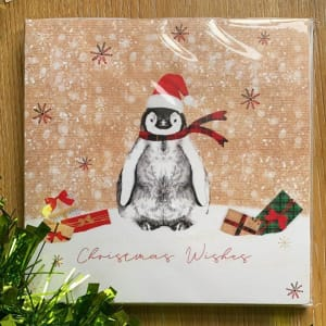 Sheffield Hospitals Charity Christmas Card - Penguin